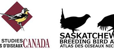 Saskatchewan Breeding Bird Atlas Takes Flight