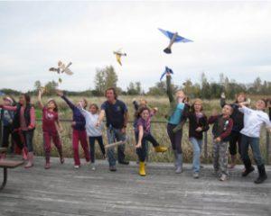 Celebrating Toronto's Birds