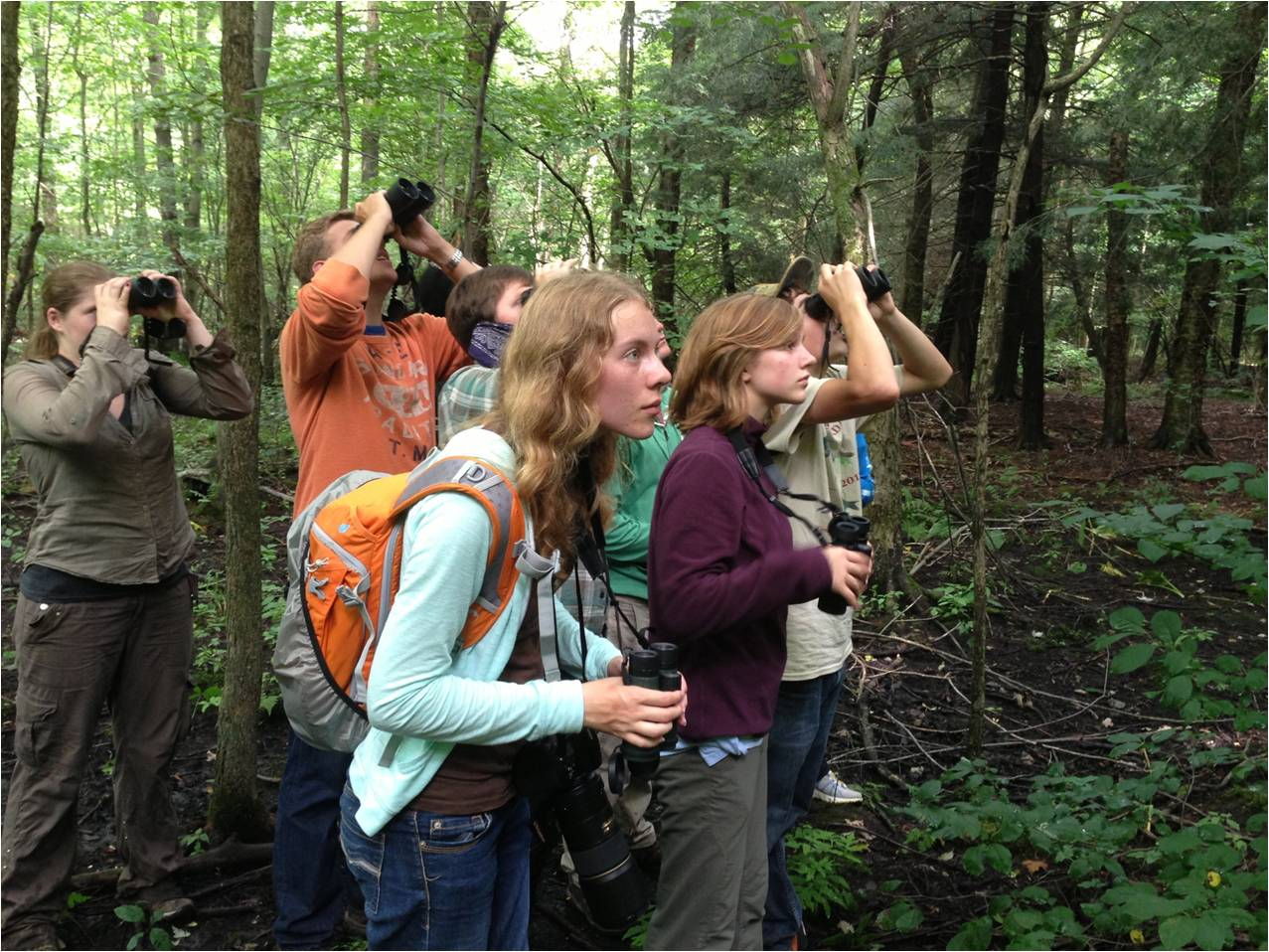 Young birders looking for a bird in a Carolinian forest