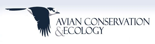 AC&E logo