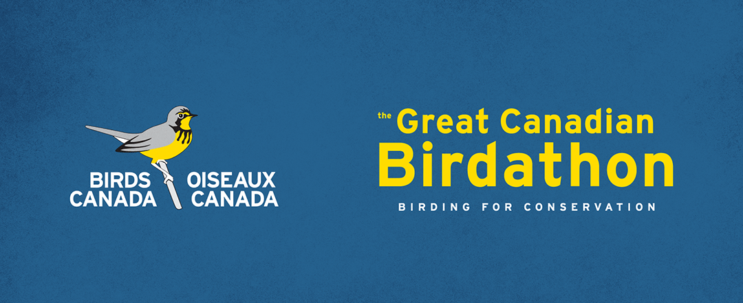 Great Canadian Birdathon Prizes