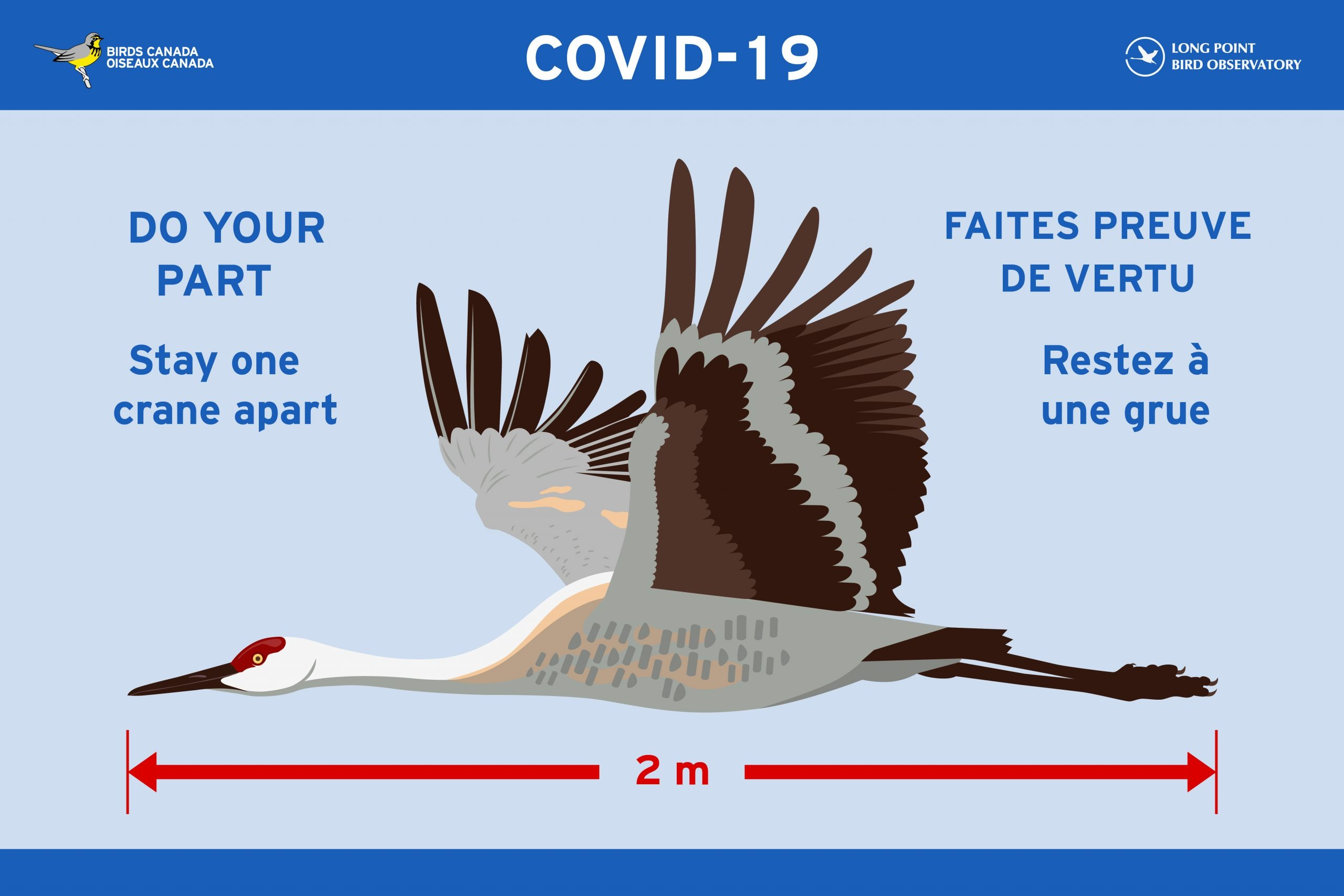 """A colourful Covid-19 Sign encouraging 2 metre Social Distancing. The signs features beautiful Sandhill Crane in flight with the caption """"Do your part: Stay One Crane Apart"""""""