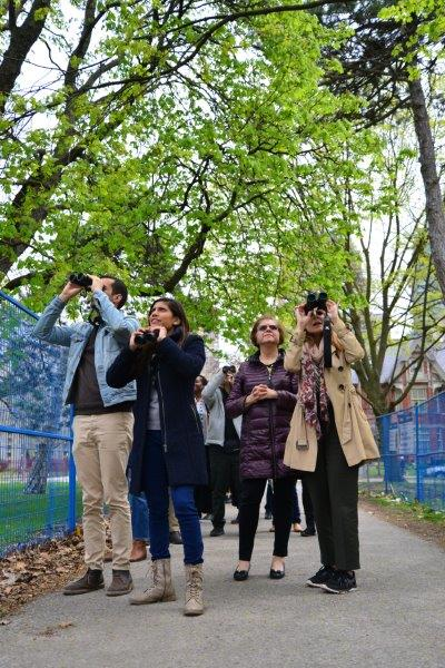 A group of people birdwatching in an urban setting